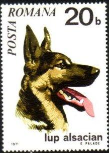 Romania 1971 Dogs