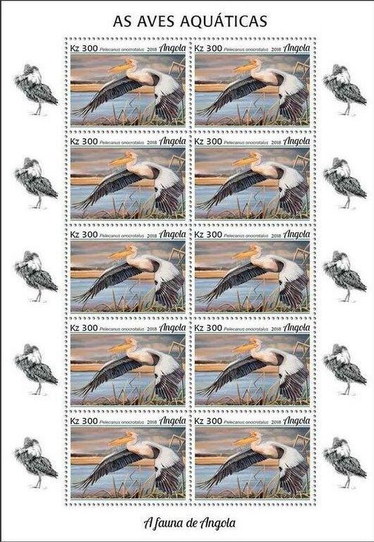 Angola 2018 Wildlife of Angola - Water Birds Sc.jpg