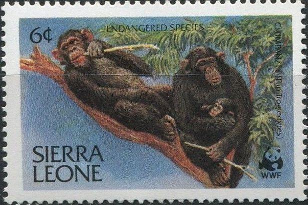 Sierra Leone 1983 WWF - Chimpanzees from Outamba-Kilimi National Park