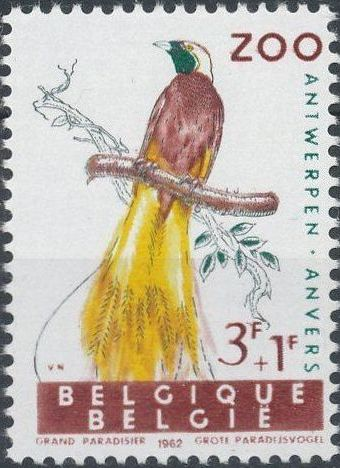 Belgium 1962 Birds of Antwerp Zoo e.jpg