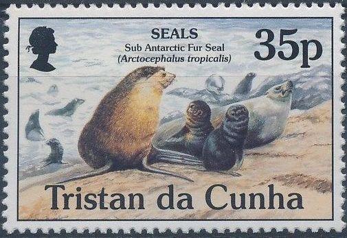 Tristan da Cunha 1995 Seals b.jpg