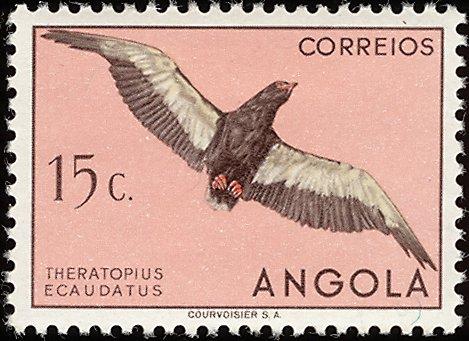 Angola 1951 Birds from Angola c.jpg