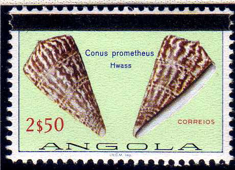 Angola 1981 Sea Shells Overprinted d.jpg