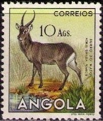 Angola 1953 Animals from Angola q.jpg