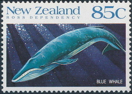 New Zealand 1988 Whales of the Southern Oceans d.jpg