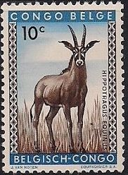 Belgian Congo 1959 Animals