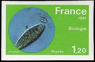 France 1981 Science and Technology h.jpg