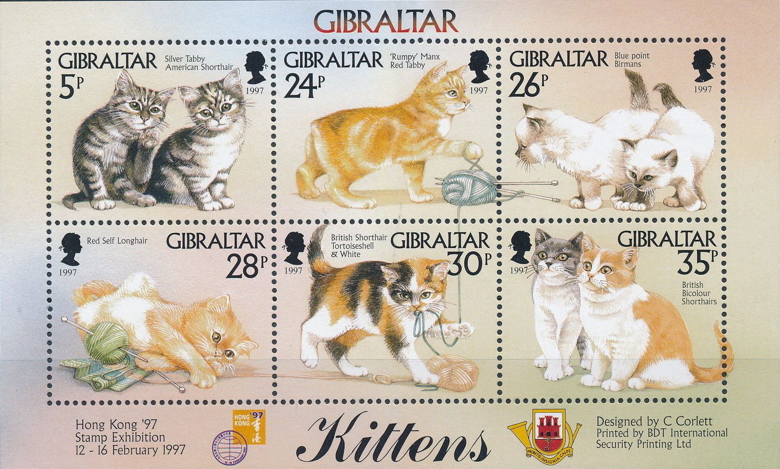 Gibraltar 1997 Kittens