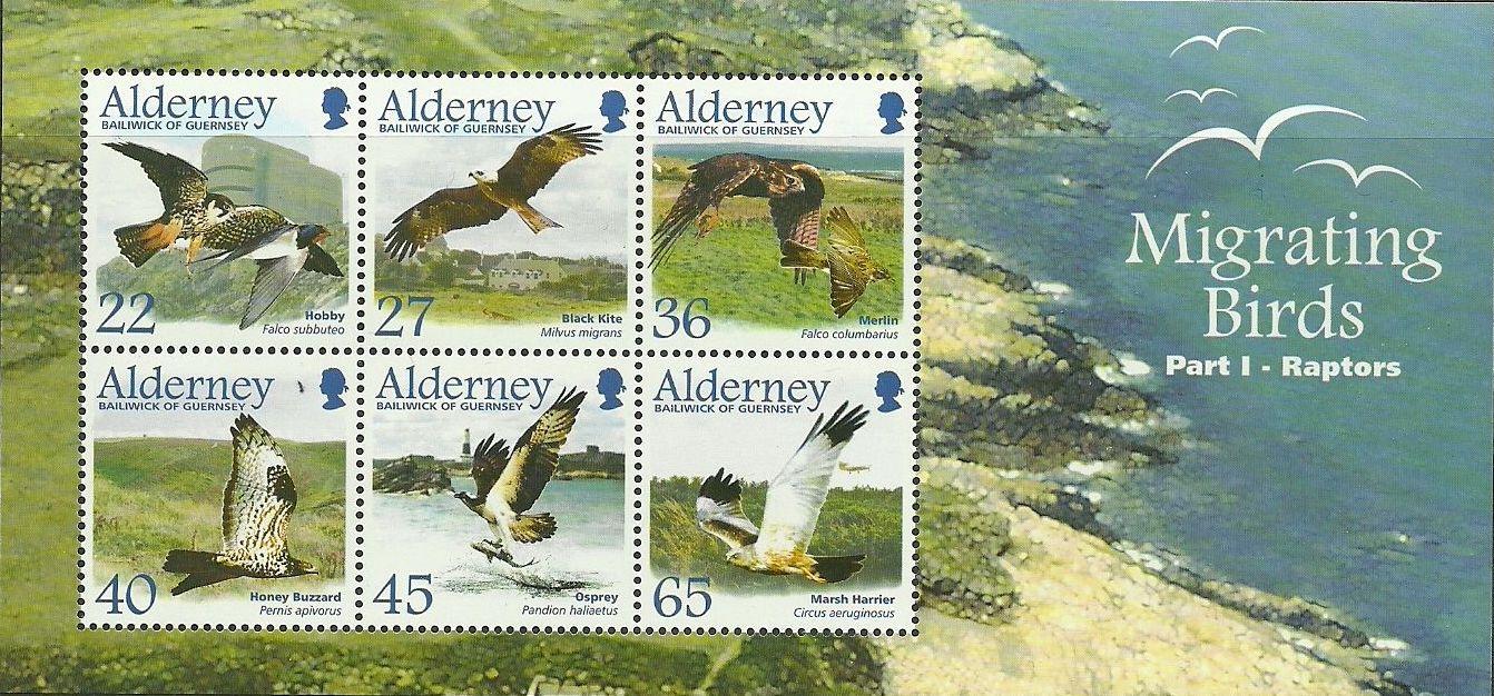 Alderney 2002 Migrating Birds Part 1 Raptors g.jpg