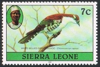 Sierra Leone 1982 Birds from 1980 Imprint 1982 e.jpg