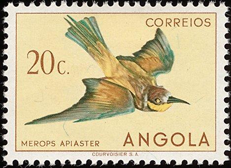 Angola 1951 Birds from Angola d.jpg