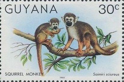 Guyana 1981 Wildlife c.jpg