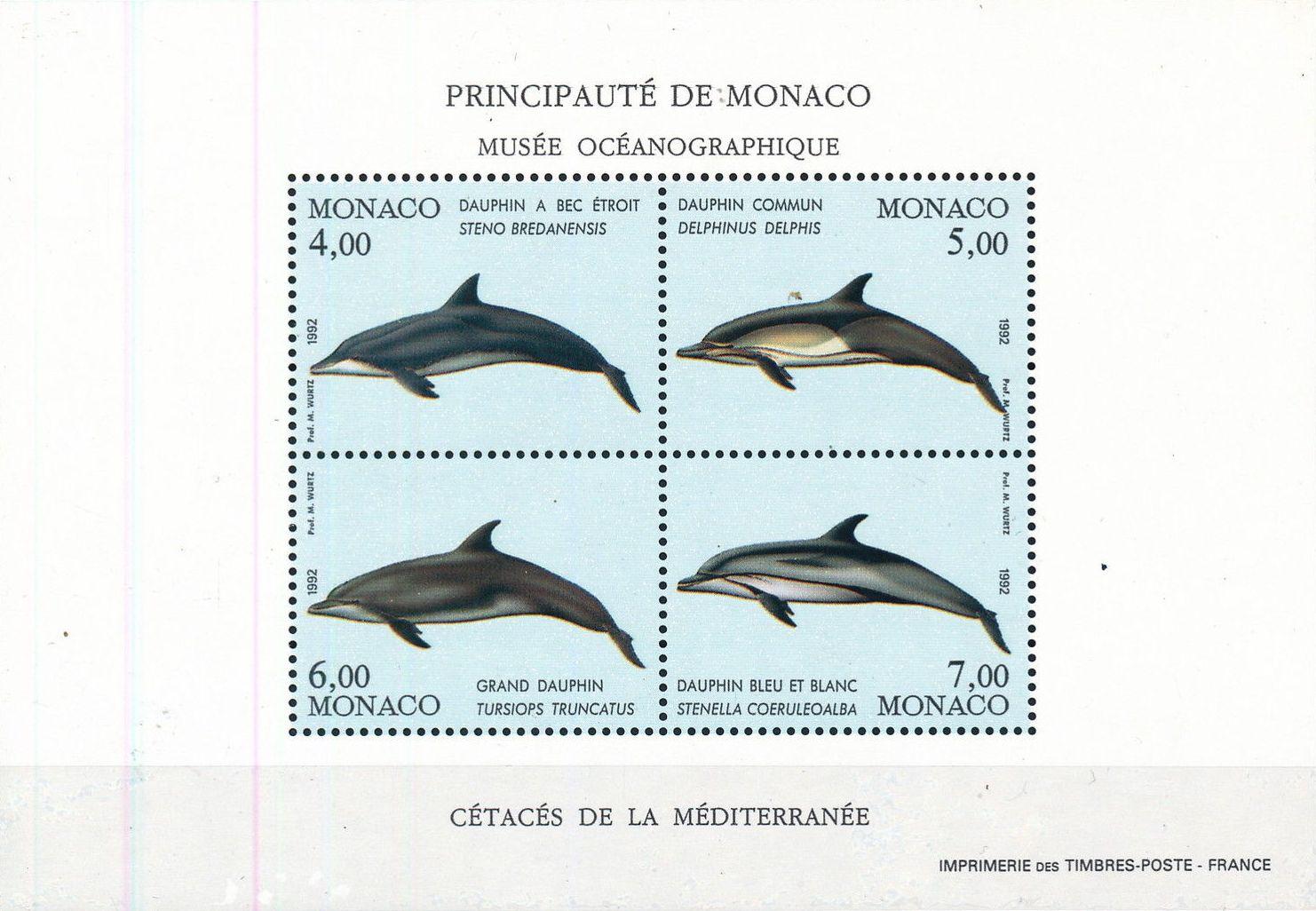 Monaco 1992 Musée Océanographique - Cétacés de la Méditerranée (1st Group) h.jpg