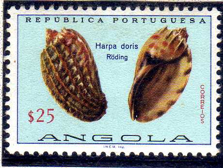 Angola 1974 Sea Shells a.jpg