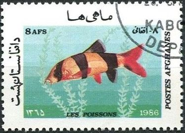 Afghanistan 1986 Fishes c.jpg