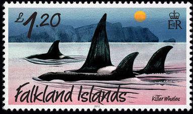 Falkland Islands 2012 Whales & Dolphins i.jpg