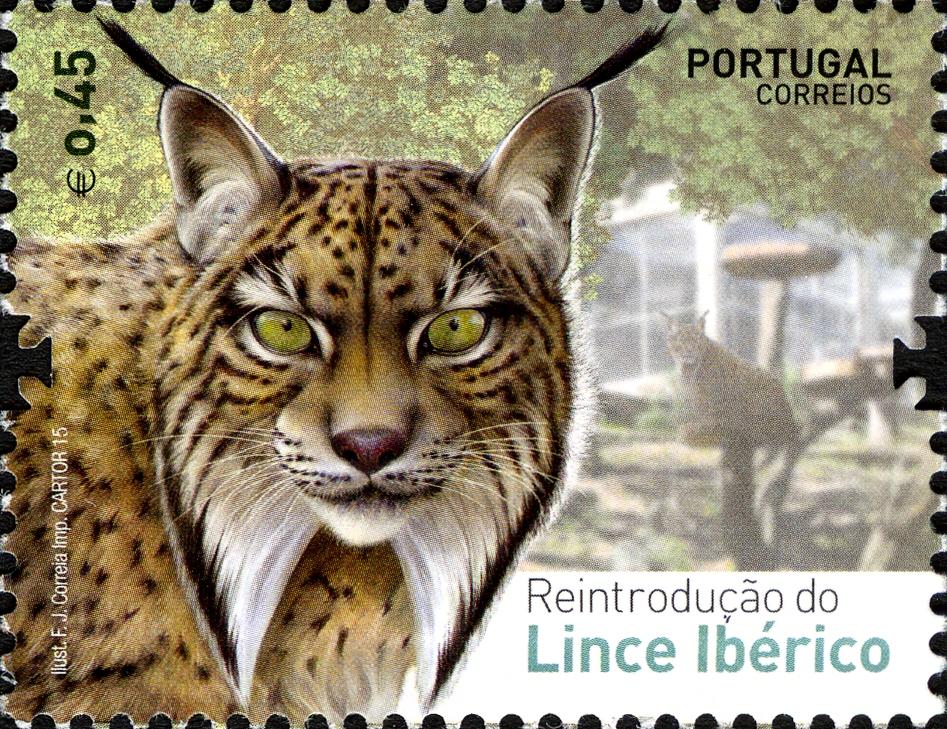 Portugal 2015 Reintroducing the Iberian Lynx into Portugal a.jpg