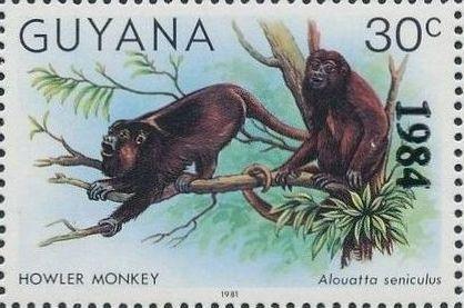 Guyana 1984 Wildlife (Overprinted 1984) b.jpg