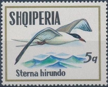 Albania 1973 Sea Birds