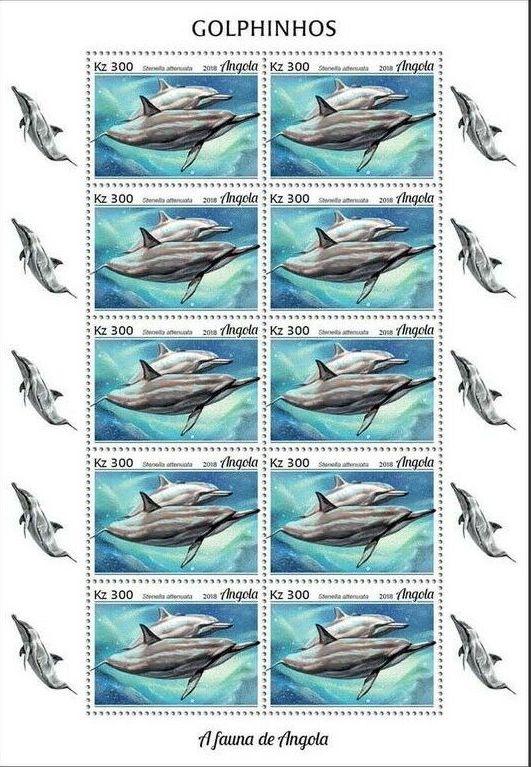 Angola 2018 Wildlife of Angola - Dolphins Sd.jpg
