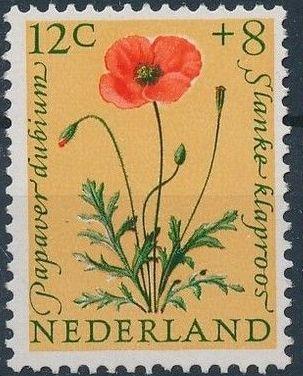 Netherlands 1960 Surtax for Child Welfare - Flowers d.jpg