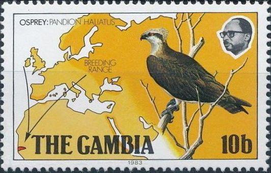 Gambia 1983 Osprey Breeding Range