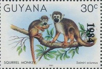 Guyana 1984 Wildlife (Overprinted 1984) c.jpg