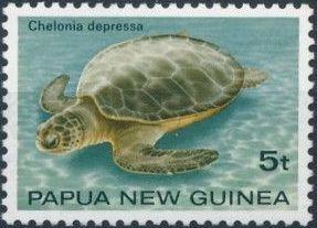 Papua New Guinea 1984 Turtles