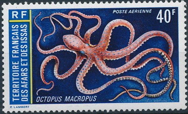 French Territory of the Afars and the Issas 1973 Marine Life