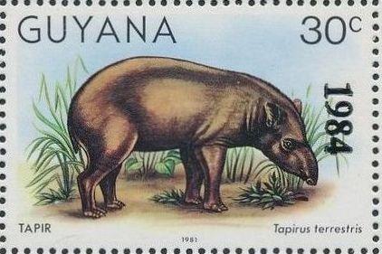 Guyana 1984 Wildlife (Overprinted 1984) e.jpg