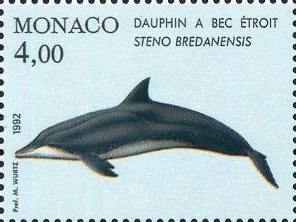 Monaco 1992 Musée Océanographique - Cétacés de la Méditerranée (1st Group) a.jpg