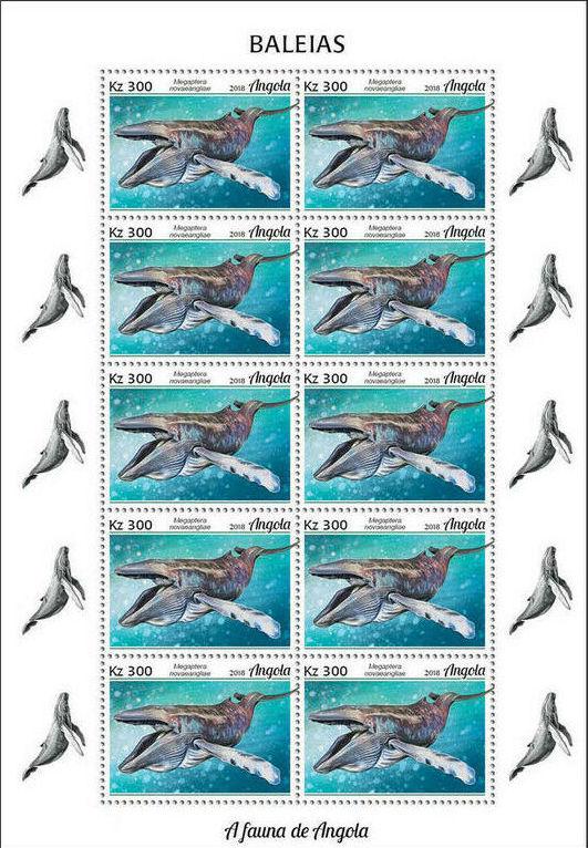 Angola 2018 Wildlife of Angola - Whales Sb.jpg