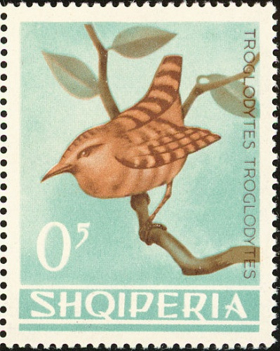 Albania 1964 Birds