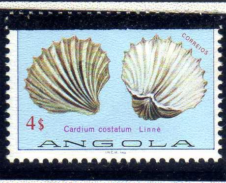 Angola 1981 Sea Shells Overprinted f.jpg