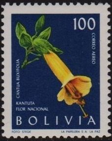 Bolivia 1962 Flowers e.jpg