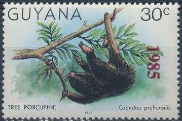 Guyana 1985 Wildlife (Overprinted 1985) a.jpg