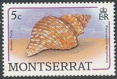 Montserrat 1988 Sea Shells