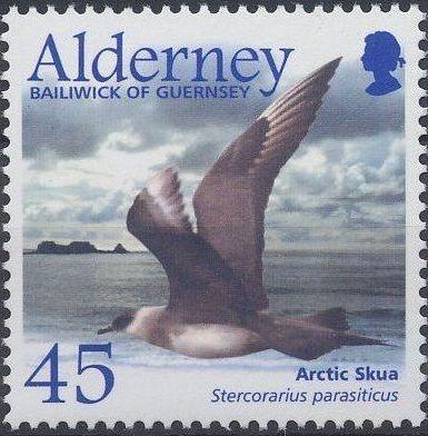Alderney 2003 Migrating Birds Part 2 Seabirds e.jpg