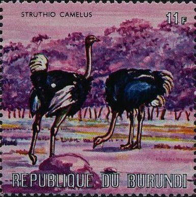 Burundi 1971 Animals p.jpg