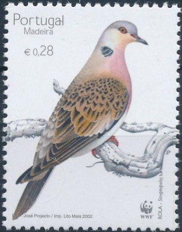 Madeira 2002 WWF Birds from Madeira