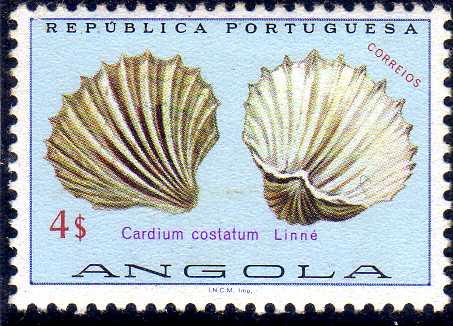 Angola 1974 Sea Shells l.jpg