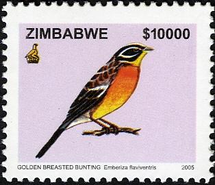 Zimbabwe 2005 Birds from Zimbabwe d.jpg