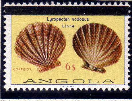Angola 1981 Sea Shells Overprinted h.jpg