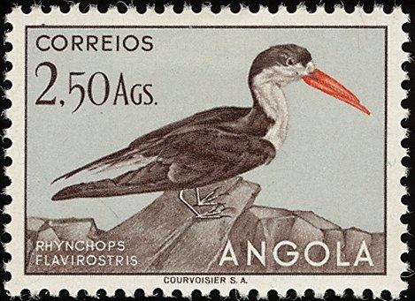 Angola 1951 Birds from Angola i.jpg