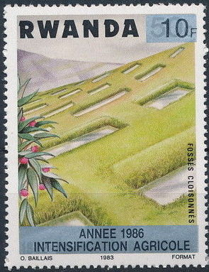 Rwanda 1986 Soil Erosion Prevention (Surcharged and Overprinted) c.jpg