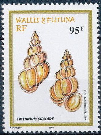 Wallis and Futuna 1999 Shells