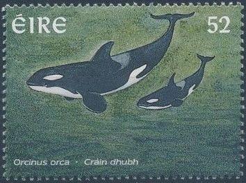 Ireland 1997 Marine Mammals d.jpg