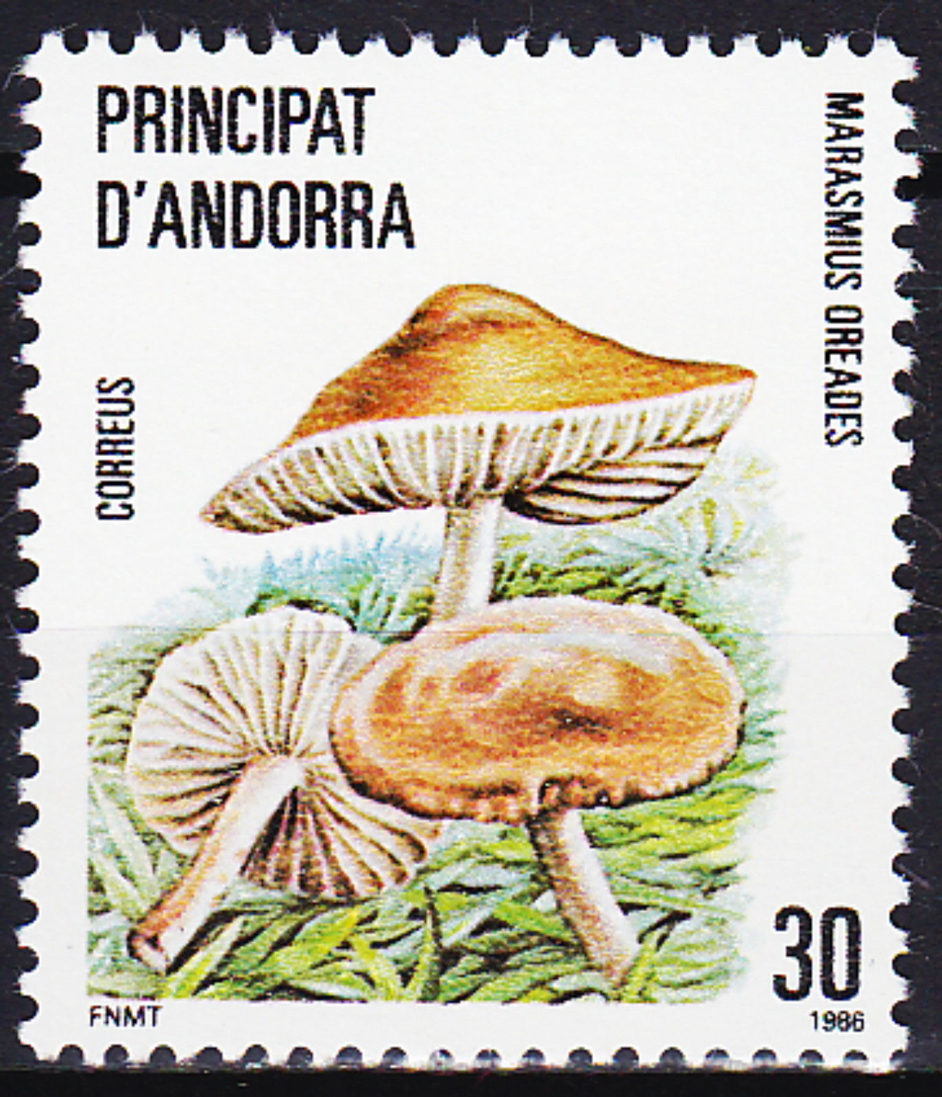 Andorra-Spanish 1986 Local Mushrooms