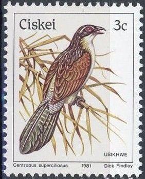 Ciskei 1981 Definitive - Birds c.jpg