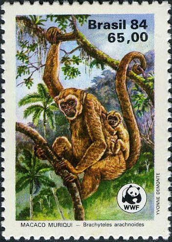 Brazil 1984 WWF - Southern Muriqui